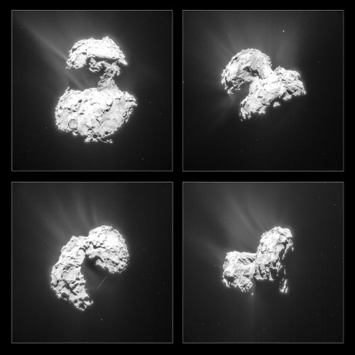 Montage of four pictures of the comet 67P/Churyumov-Gerasimenko taken by the Rosetta space probe's NAVCAM (Image ESA/Rosetta/NAVCAM)