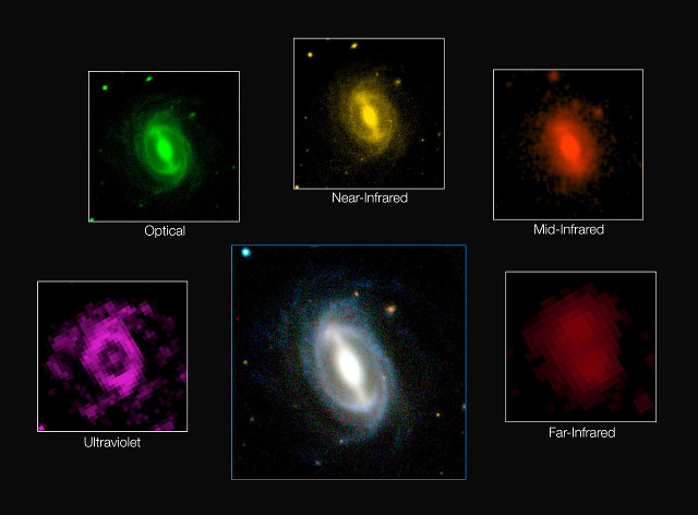 The appearance of a typical galaxy at different wavelenghts in the GAMA survey (Image ICRAR/GAMA and ESO)