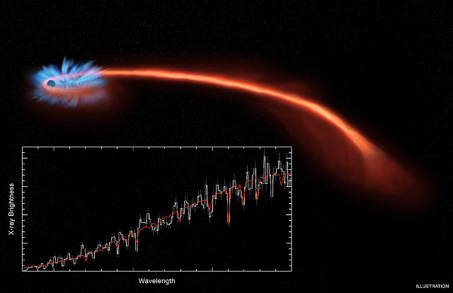 Artistic illustration of the event ASASSN-14li with the accretion disk around the black hole and part of the materials from the shredded star forming a tail (Image Spectrum: NASA/CXC/U.Michigan/J.Miller et al.; Illustration: NASA/CXC/M.Weiss)