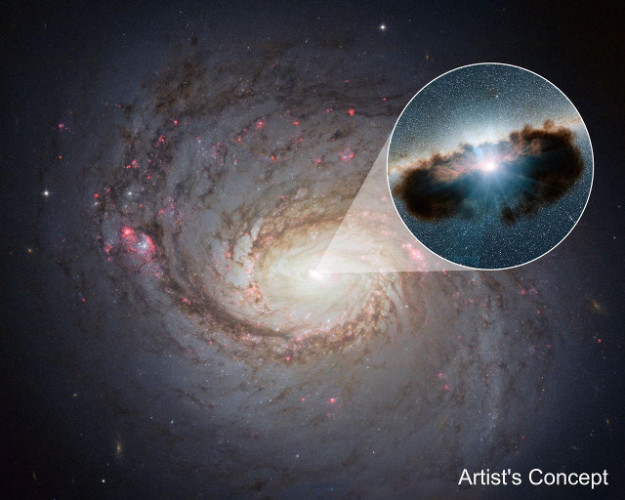 Galaxy NGC 1068 seen by the Hubble Space Telescope. In the circle there's an artist concept of the doughnut of gas and dust surrounding the supermassive black hole at its center (ImageNASA/JPL-Caltech)