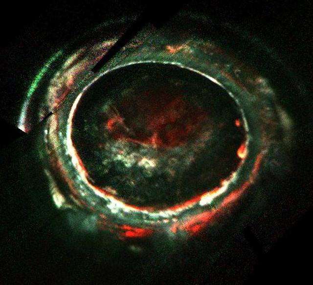 Jupiter's southern aurora (Image NASA/JPL-Caltech/SwRI)