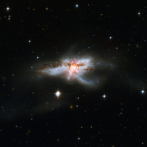 The galaxy NGC 6240 (Image NASA, ESA, the Hubble Heritage (STScI/AURA)-ESA/Hubble Collaboration, and A. Evans (University of Virginia, Charlottesville/NRAO/Stony Brook University))