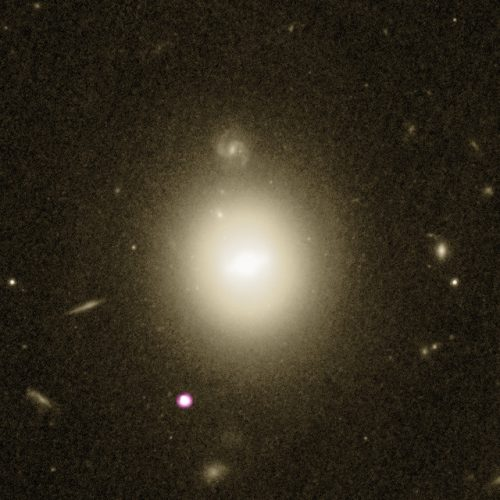 The galaxy galaxy 6dFGS gJ215022.2-055059 and the intermediate-mass black hole candidate