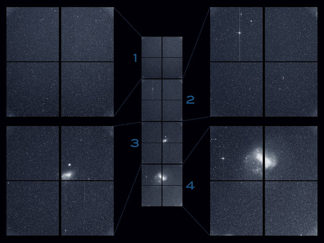 The images captured by TESS (NASA/MIT/TESS)