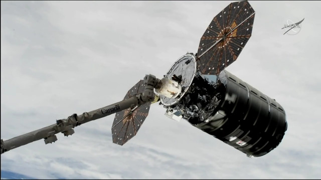 The Cygnus John Young cargo spacecraft captured by Canadarm2 robotic arm (Image NASA TV)