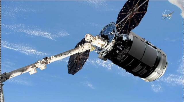 The Cygnus Alan Bean cargo spacecraft captured by Canadarm2 robotic arm (Image NASA TV)