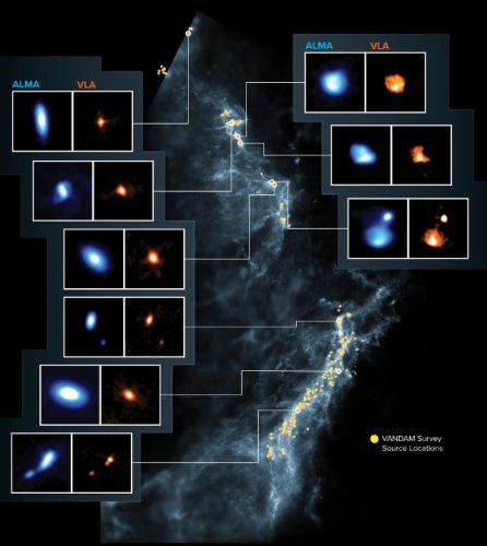 Protostars in the Orion Complex